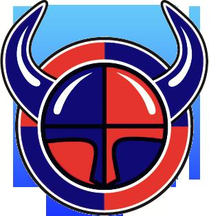 Vuosaaren Viikingit
